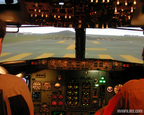 Full motion flight sim